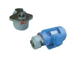 低压齿轮泵