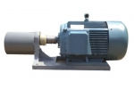 齿轮泵电机组